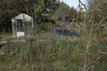 Proeftuin Erasmusveld 16.jpg