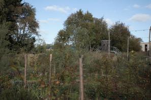Proeftuin Erasmusveld 33.jpg