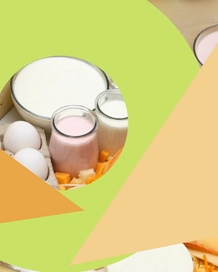 Yogurt and other dairy products