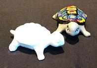 FE0020-Anisa The Turtle.jpg