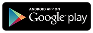 google play store download.png