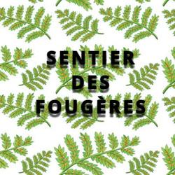 Sentier des Fougères