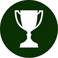 icon.award.png