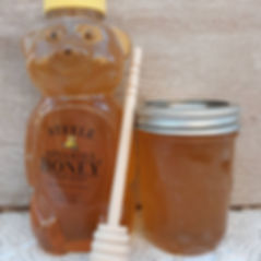 Honey pic 1.jpg