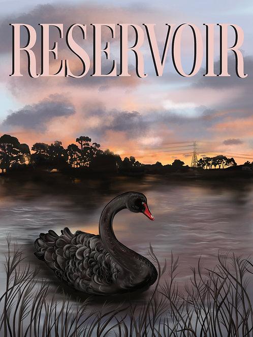 Reservoir Swans