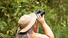 Turistas em Jaguariaíva-PR