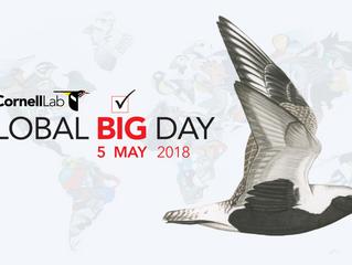 Jaguariaíva registra 82 espécies no Global Big Day