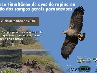 I Censo simultâneo de aves de rapina na região dos campos gerais paranaenses