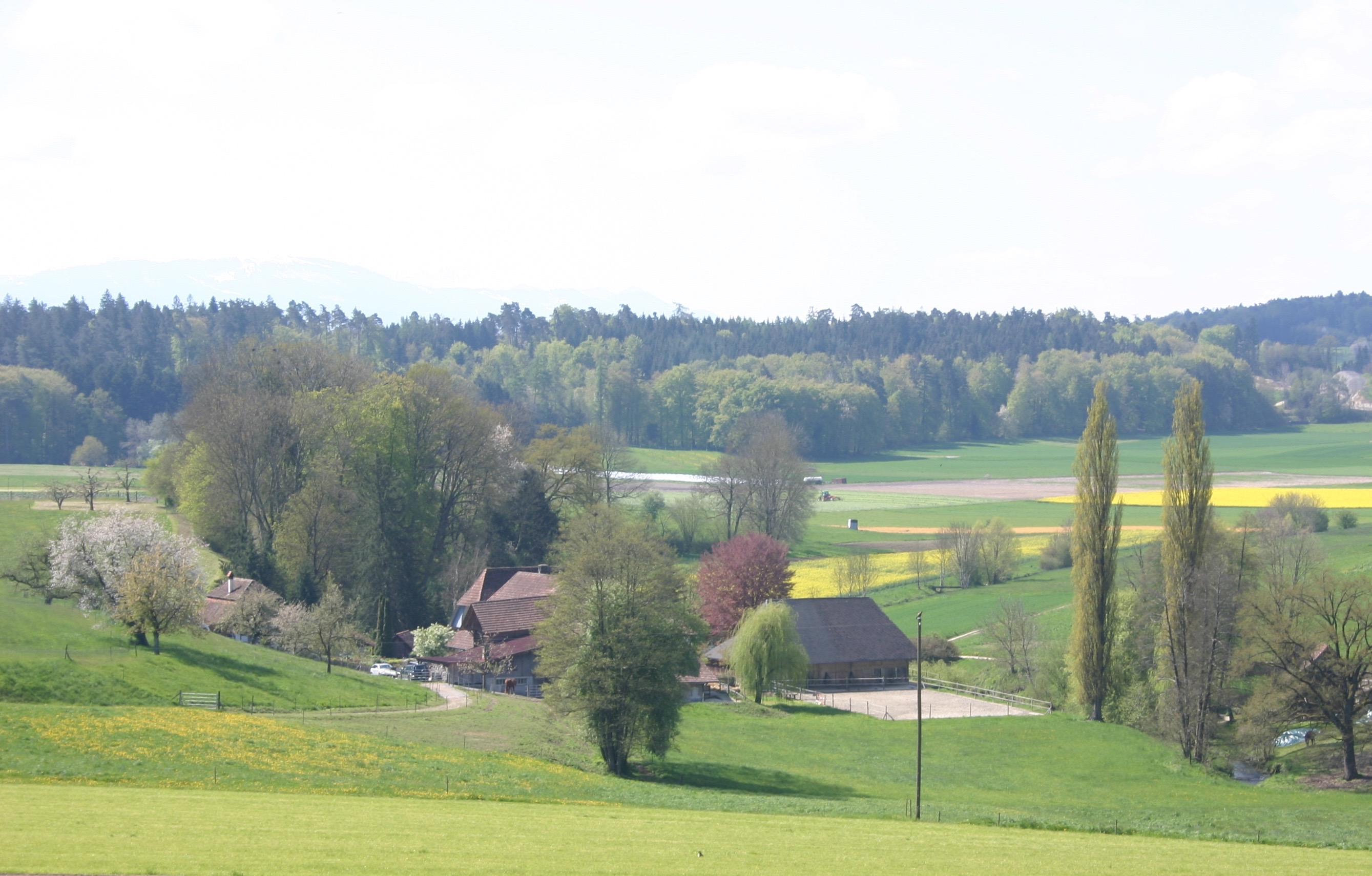 Mühle Kriechenwil/Schönenbühl