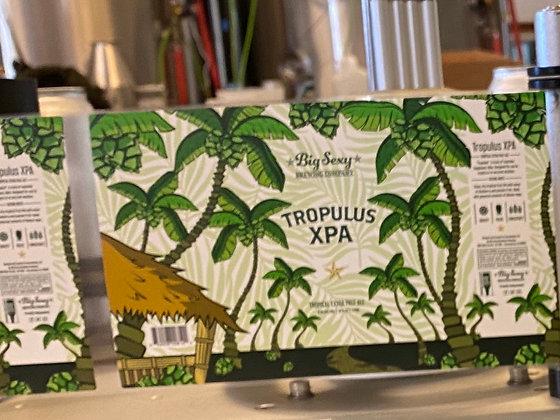 Case of Tropulus XPA 24/16 ounce cans 6.5%