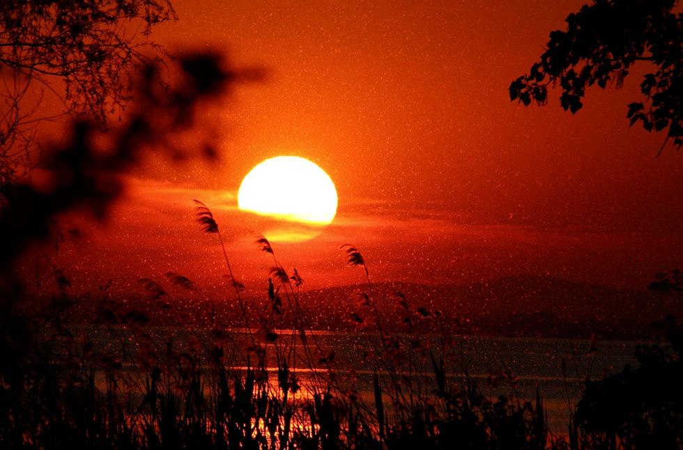 Sunset on Trasimeno lake - no filter