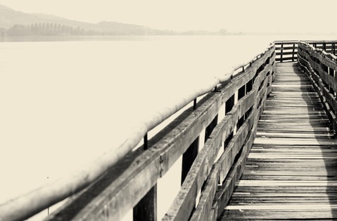 Trasimeno lake platform in a WWF area