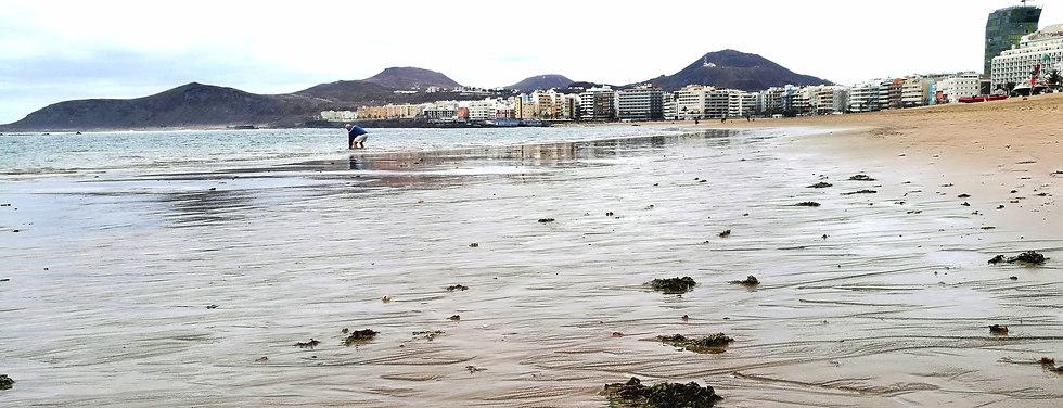 Las Palmas de Gran Canaria wet beach