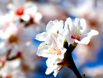 Foto Feb. 2012_246.jpg