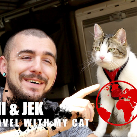 Travel with my cat, un gatto ti cambia la vita! La storia di Jonni & Jek, come tutto è iniziato.