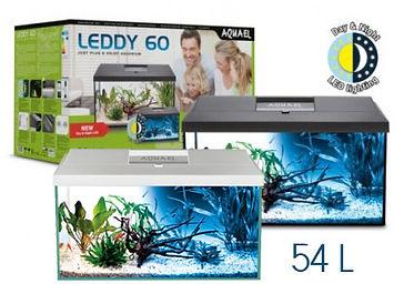 leddy-60-day-night-54-ltr copy.jpg