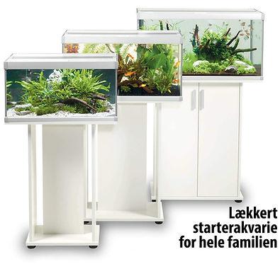 Family akvastabil akvarie.jpg
