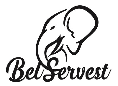Pic Strip Home BelServest Logo_edited_ed