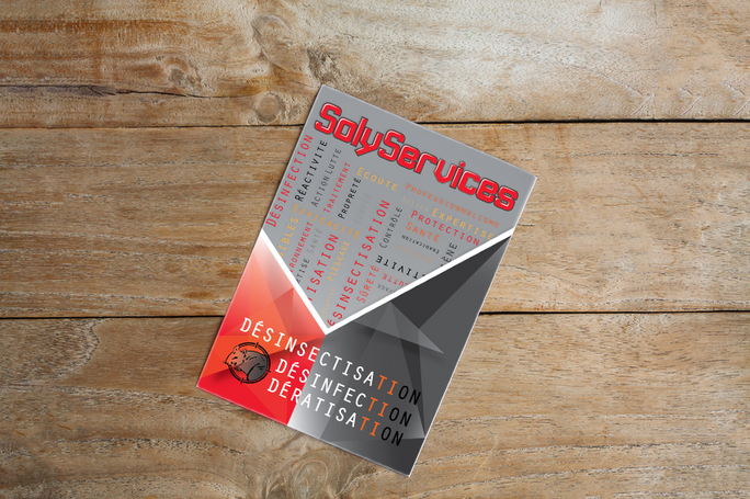 flyer solyservices-1.png