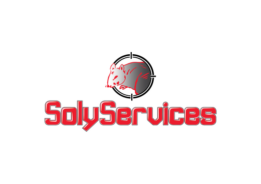 logo solyservice pour galerie.png