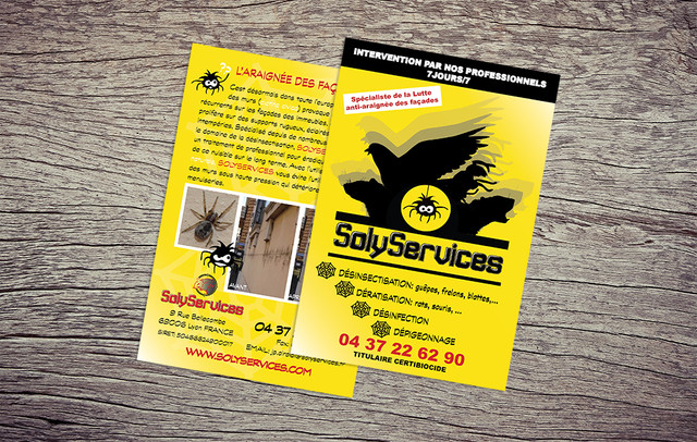 flyer solyservices.jpg