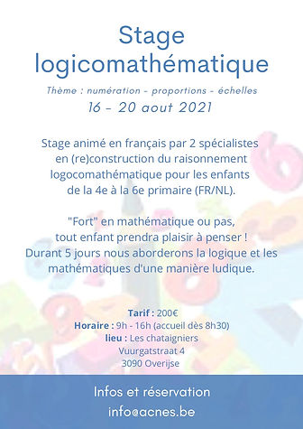 Stage logicomathématique.jpg