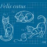 """""""Patented Cat"""" Design"""