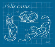Cat Blue Print