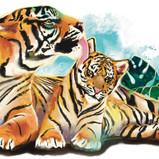 """Tigers"" Design"