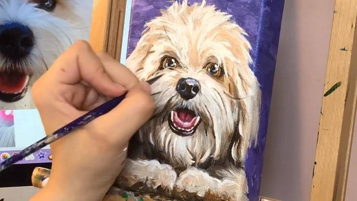 "Time-lapse Havanese Puppy! 5""x7"" acrylic on canvas. 🐾♥️ Music: ""Familie"" by @zarnimusic, who is this dog Teddy's talented mamma!!! She is turning 30yrs this May 2, so I thought I would surprise my dear friend with a little painting of her beloved fur"