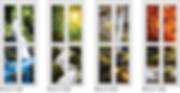 nature scenery bifold door design singapore