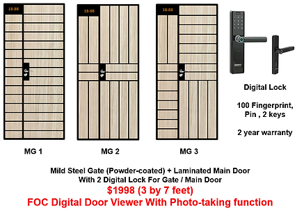 Mild Steel Gate With 2 Singgate digital