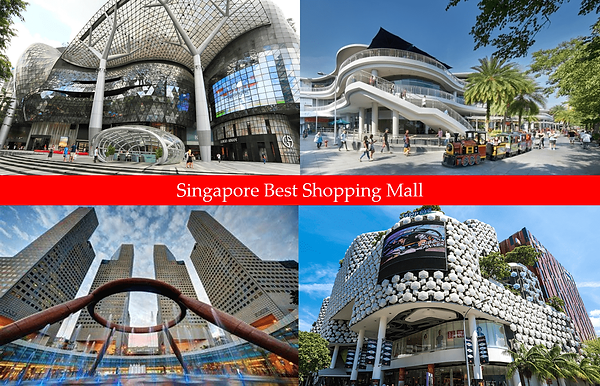 Singapore Best Shopping Mall.png