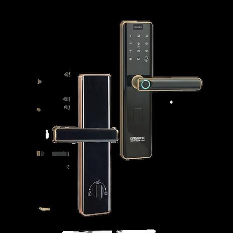 Singgate FS012 Rose Gold Colour Digital Lock For Main Door