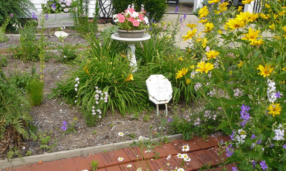 Our Garden July  2013 006.JPG