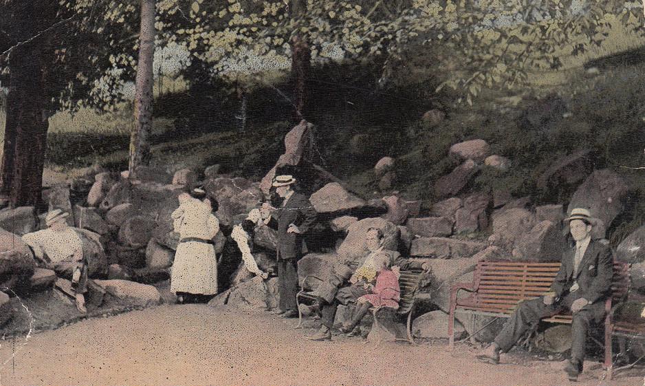 Mineral Springs at Garfield Park 1911.jp