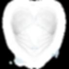 Divine+Designs+Header.png