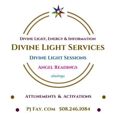 Divine Light Services logo