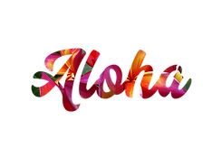 Aloha cool script floral font.png