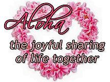 Pj Fay Aloha