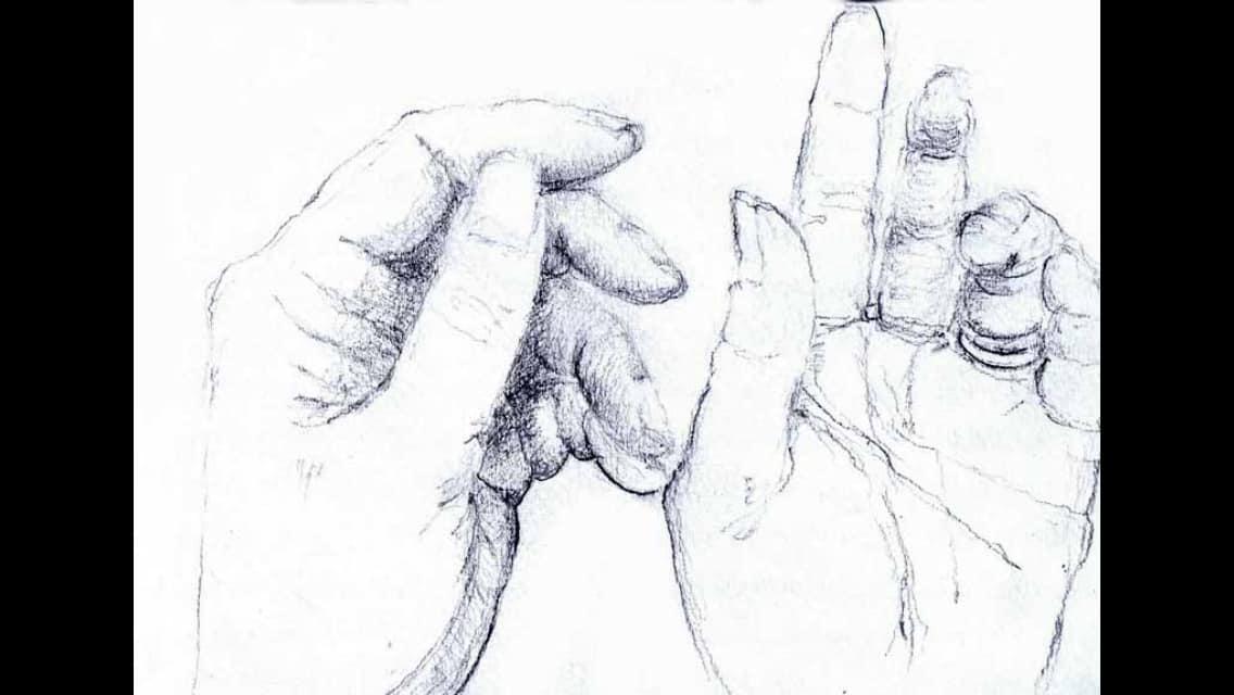 Hospital Hands 1