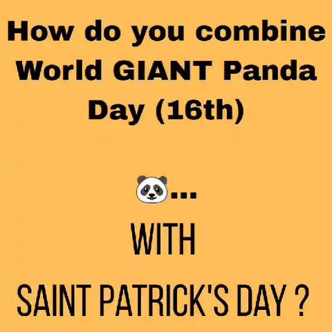 Paddy Panda!
