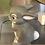 Thumbnail: Thumper bunny Ceramic + Paints Kit