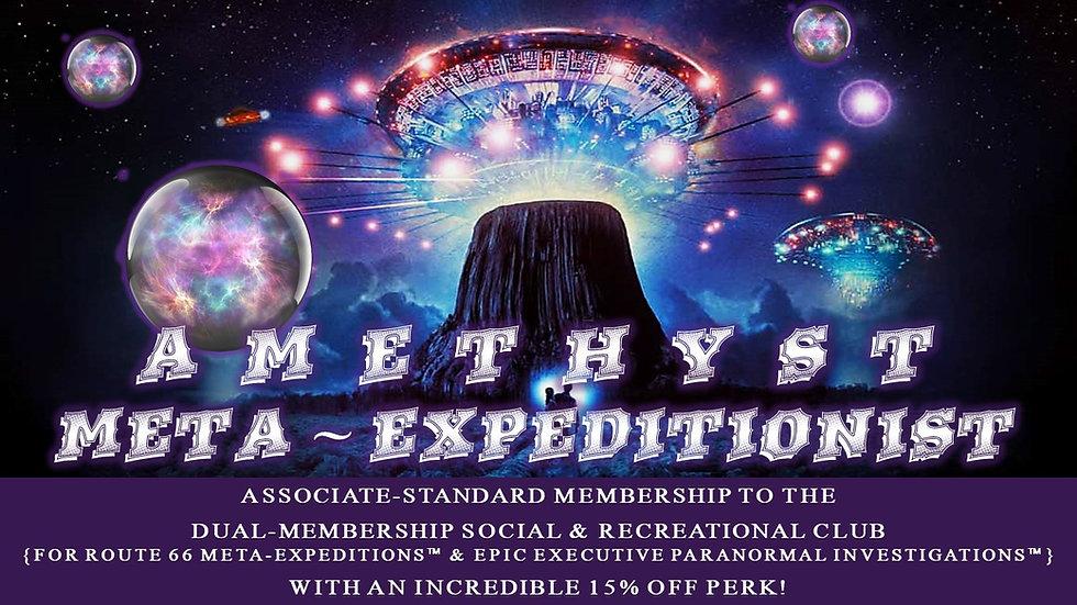AMETHYST META-EXPEDITIONIST: Associate Standard Membership Plan