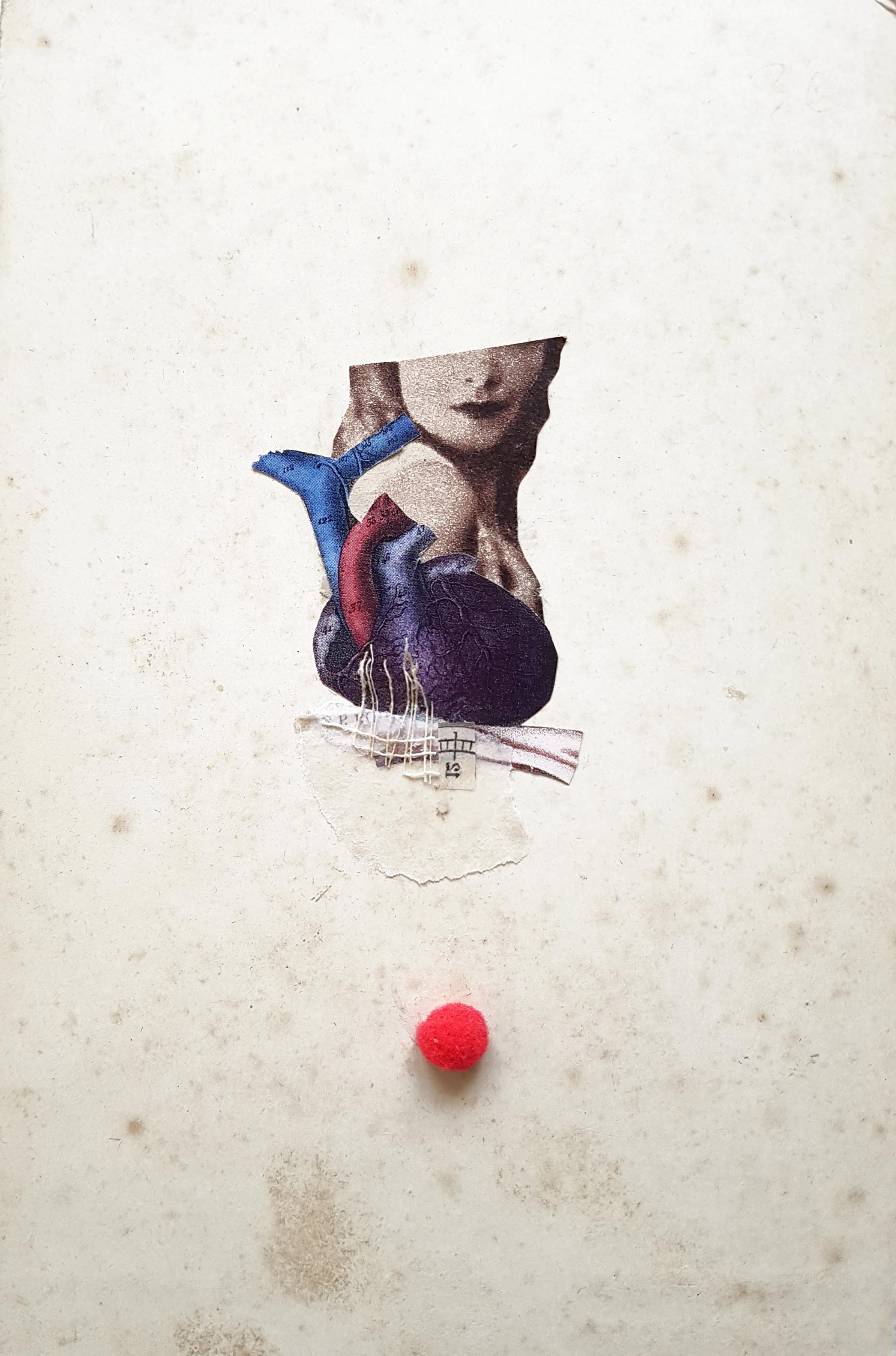 Sección teórica del corazón