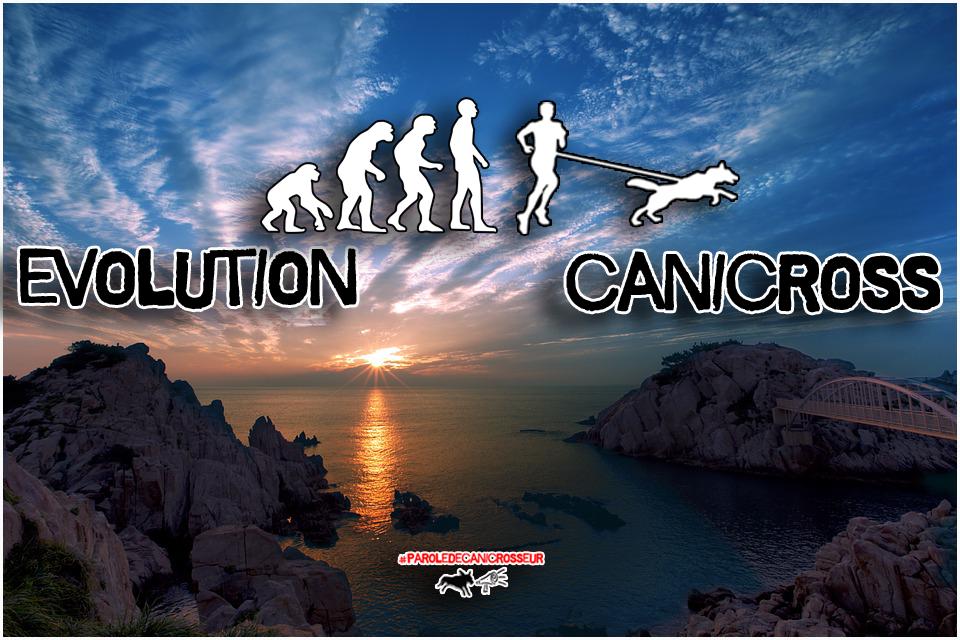 canicross run evolution