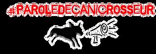 canicross , course à pied