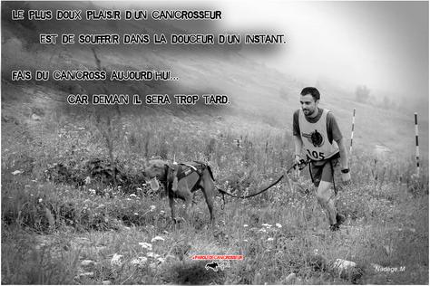Courir avec son chien est une forme d'anesthésiant naturel...