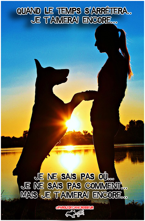 Enjoy Life, Enjoy canicross! Just Canicross Addict!