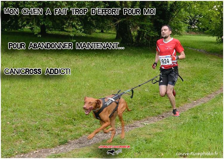 canicross addict chien dog